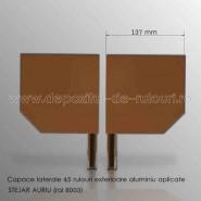 Capace laterale 45 grade pentru rulouri exterioare aluminiu aplicate 137 stejar auriu ral 8003