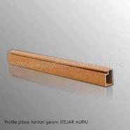 Profile plase tantari geam din aluminiu stejar auriu